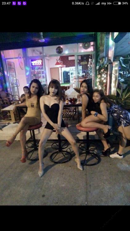 katty bar.png